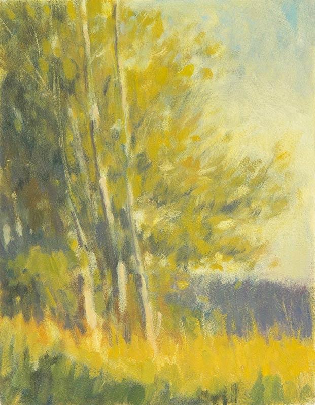 cottonwood-mitchell-albala