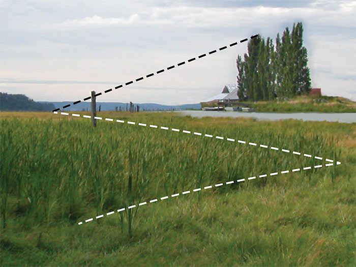 Land-dominant landscape composition with lines of directional energy