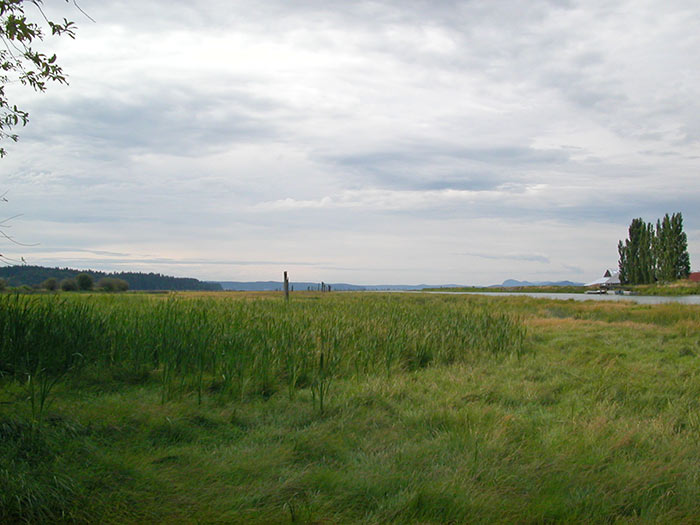Photo of boring landscape composition with equal amounts of land and sky